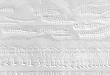 'Line Transect Grey (Bellbird Waterhole)'  Triptych, plant blind embossing, graphite, ink & pigment on rag paper, 111 x 36 cm each panel, 2014 (detail)