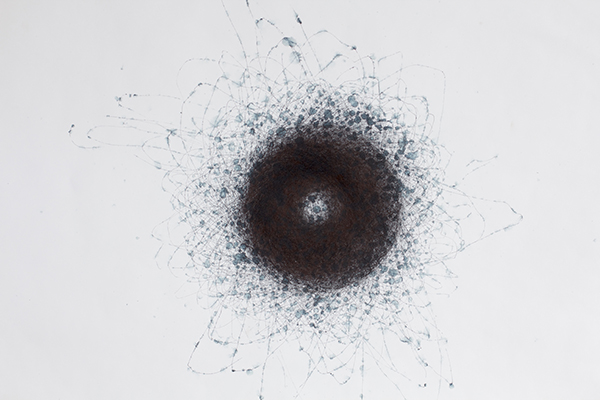 (Globular Orbits), 20 - 21 September 2012, SW, Sparse Rain, 19 hrs (Flinders Street Station Series), 2012<br>pigment and water-soluble ink on paper, 58.5 x 81 cm