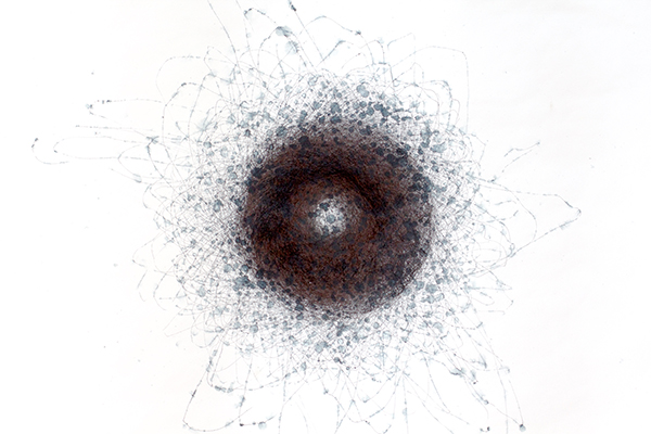 Flinders Street Station (Flobular Orbits), 20-21 September 2012, SW, sparse rain, 2012<br>Wind drawing, duration 19 hours, pigment and water-soluble ink on paper, 58.5 x 81 cm