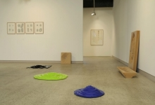 charles-anderson-the-architecture-of-stains-2010-installation-view