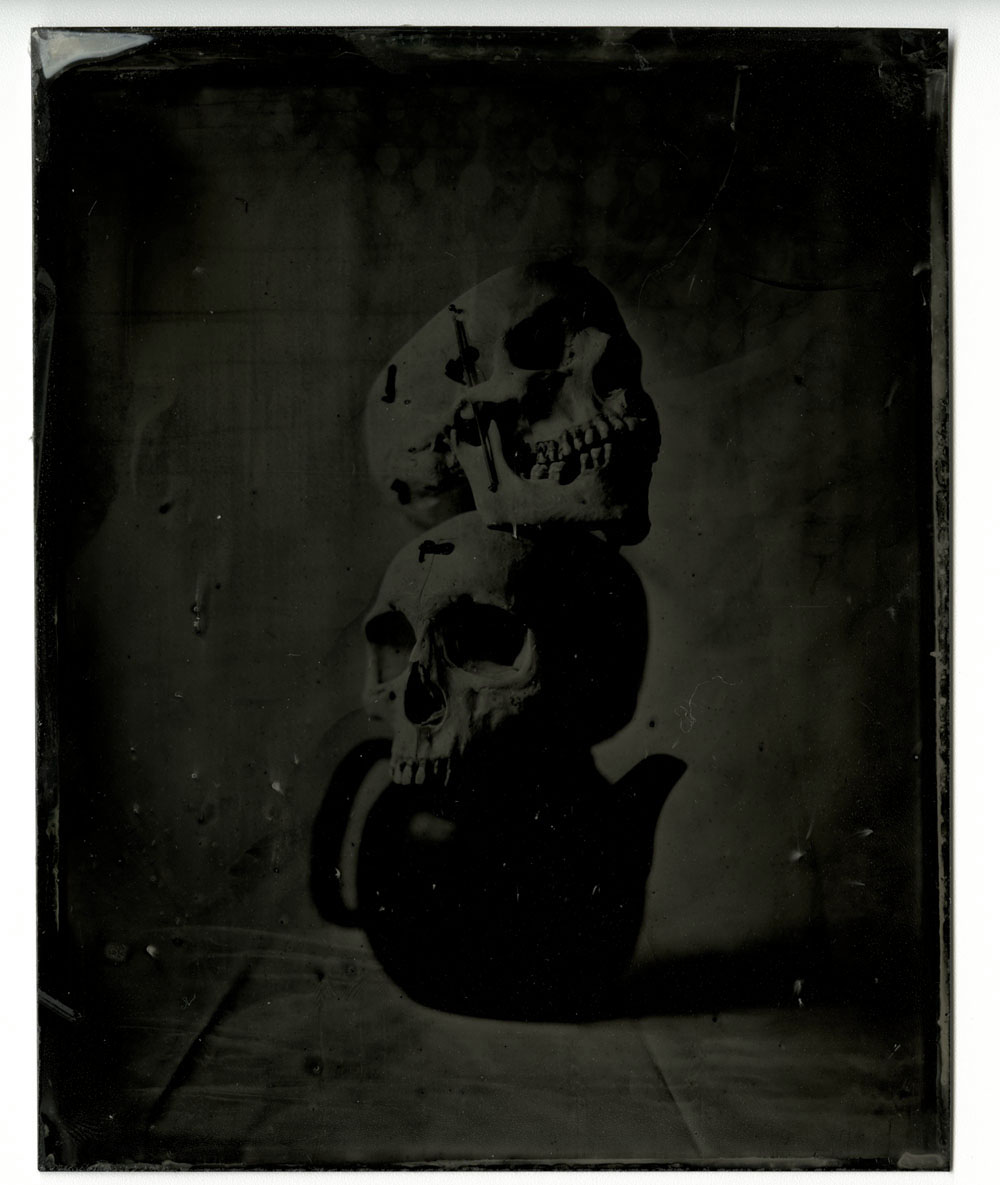 Still Life After Penn #1, 2017<br>tintype, 5 x 4 inches