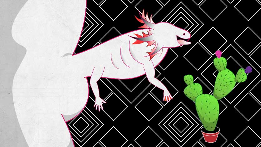 'aXolotl's Rapture', 2014<br>HD Animation<br>1 minute loop