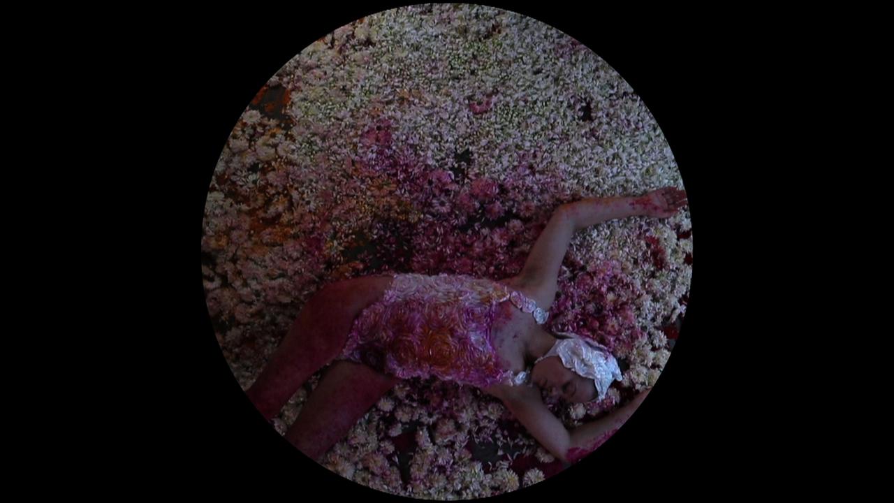 Hannah Raisin, Spectrum, 2016<br/>single channel video, 26 minutes, edition 1 of 10 + 2 A/P
