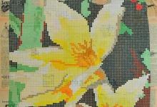 'Tulip Tarda', 2011