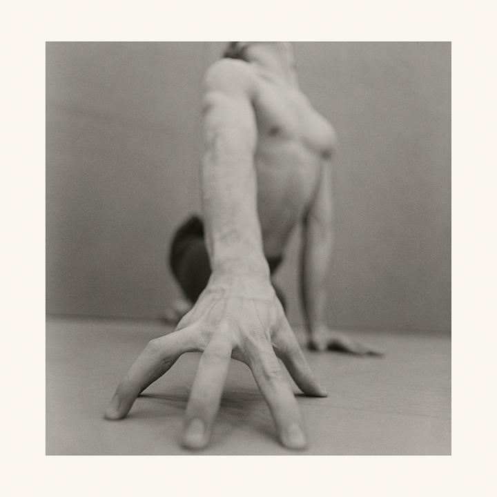 'Lust', 2014
