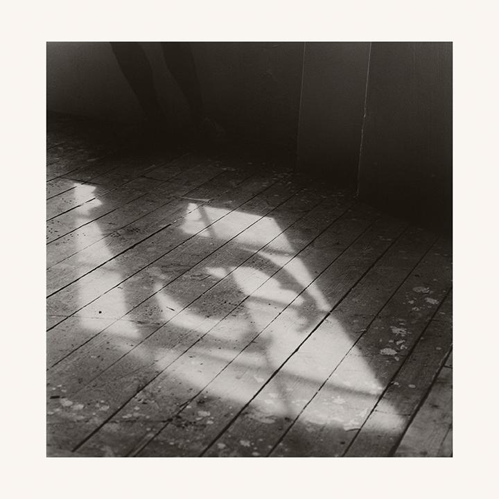 'Bird Floor Window', 2014