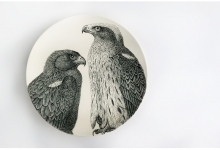 susan-hipgrave-aquila-pennata-booted-eagle-2012-black-underglaze-on-walkers-superior-white-porcelain_web