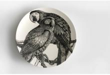 susan-hipgrave-arara-brazilian-macaw-black-underglaze-on-walkers-superior-white-porcelain