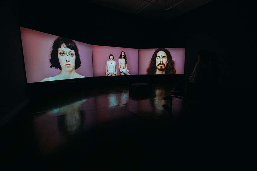 Installation View from The Superior Animal II, 2016 <br>Video still, 75 x 40 cm