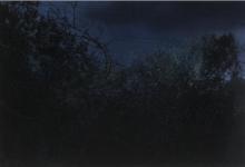 saffron-newey-beach-road-2010-oil-on-canvas-100-x-150cm