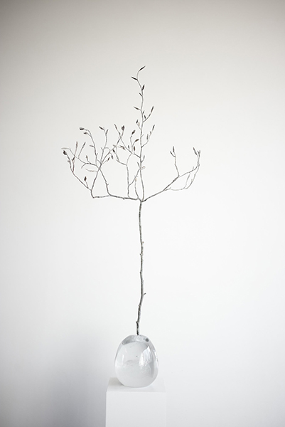 Seed I (Asia), 2017 <br> crystal and bronze, dimensions variable