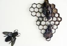 zoe-amor-the-queen-emerges-2012-bronze-58-x-47-x-5cm-ed-of-3
