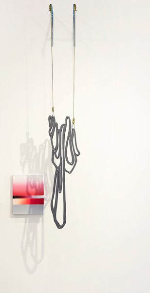 9. 'shadow drip 2', acrylic and oil on canvas and MDF, stainless steel, rope, painting: 47 x 36 cm, installation dimensions variable, (diptych), 2015