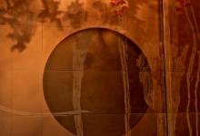 Emma Davies  Cherry blossom & Jeremy Kibel etching_installion_Hamton_Fifty Albert _ foyer view
