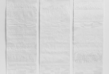 'Line Transect Grey (Bellbird Waterhole)'  Triptych, plant blind embossing, graphite, ink & pigment on rag paper, 111 x 36 cm each panel, 2014