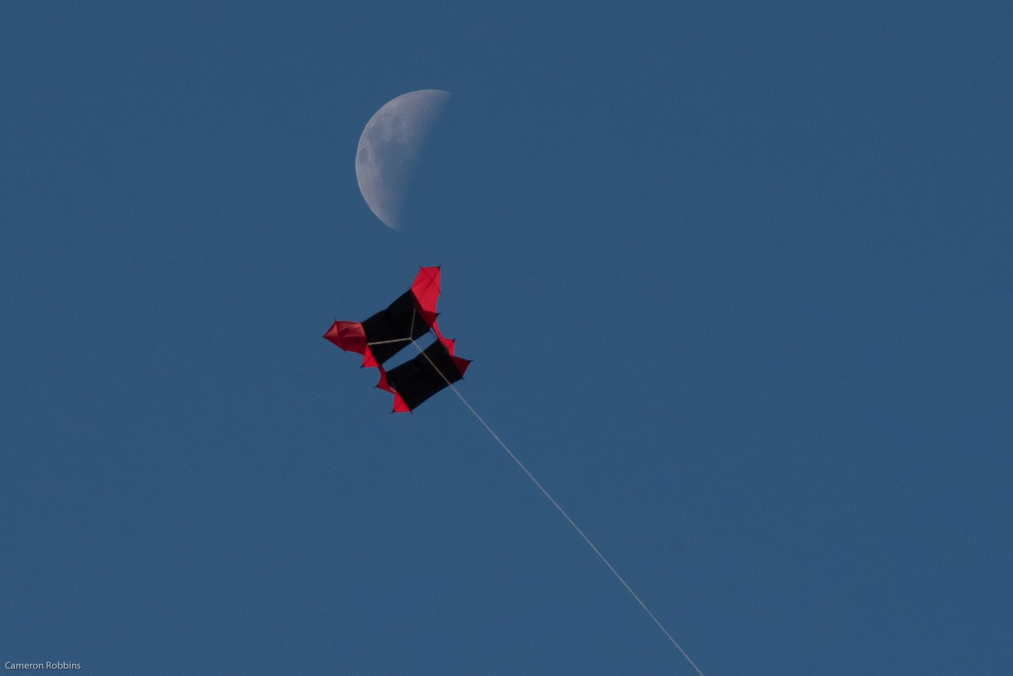 Monmar moon kite<br/>2020, Photographic Inkjet Print on Platine Paper