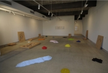 charles-anderson-the-architecture-of-stains-2010-installation-view_0