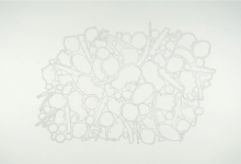 charles-anderson-wall-drawing-recombinant-terrain-stoppage-02-graphite-dimensions-variable