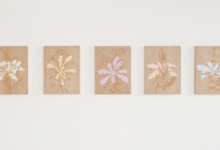 megan-keating-drawing-works-2012-oil-pearlescent-pigment-synthetic-polymer-on-7-beech-panels-40-x-30cm-each