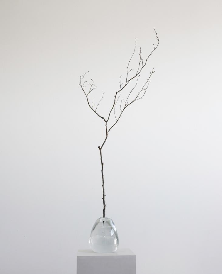 5. 'Seed I', crystal & bronze, 40 x 60 x 90 cm, 2015