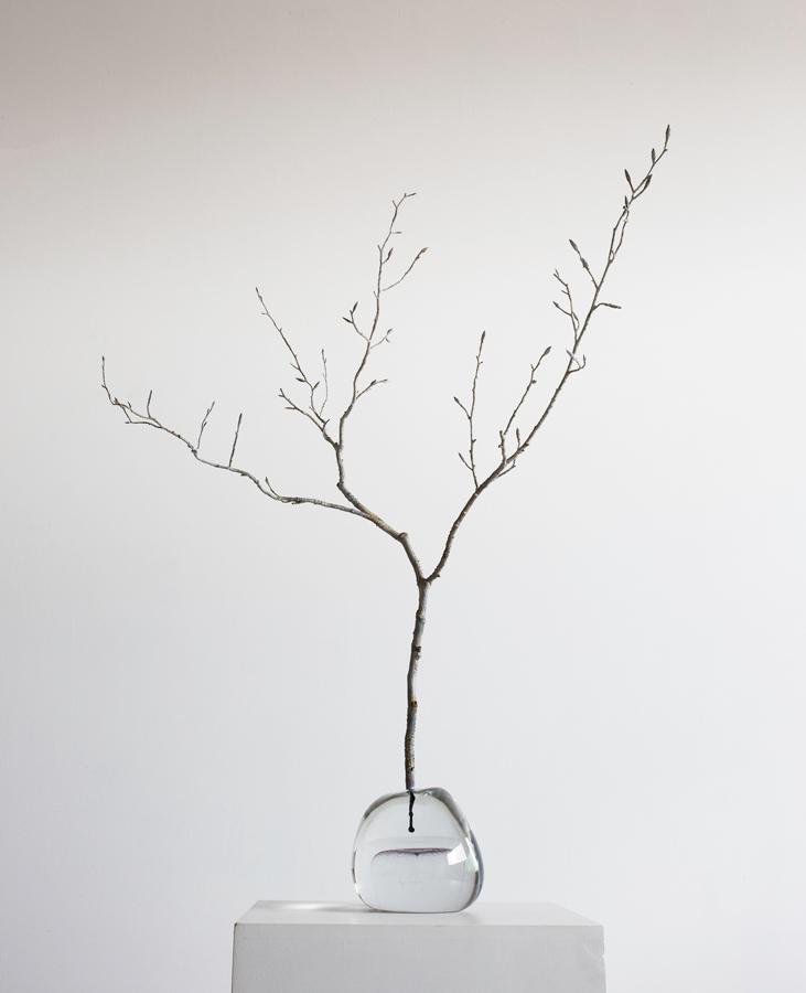6. 'Seed II', crystal & bronze, 40 x 60 x 90 cm, 2015